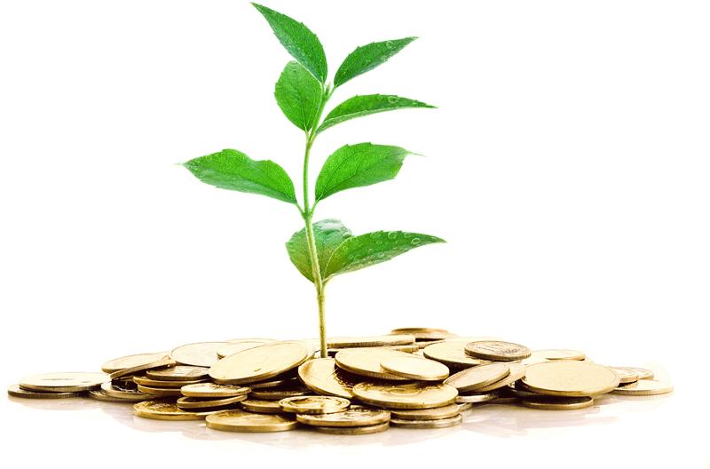 l'argent en permaculture